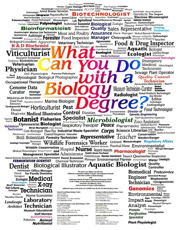 Pharmacy Technician top jobs for biology majors